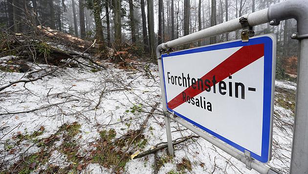 Ort im Burgenland für Verkehr wieder erreichbar (Bild: APA/ROBERT JAEGER)