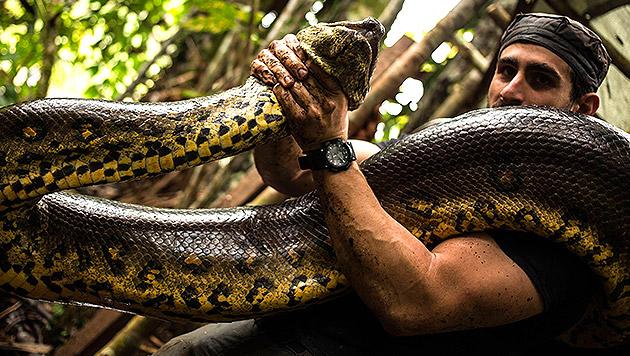 Mann wollte sich von Anakonda verschlingen lassen (Bild: Facebook/Paul Anacondero)