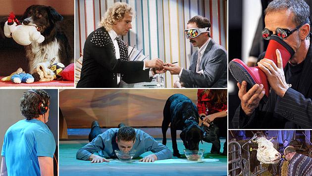 Hunde, Stiefel und Kühe sorgten für Lacher - und Thomas Gottschalk ging einem Betrüger auf den Leim. (Bild: dpa, ZDF)