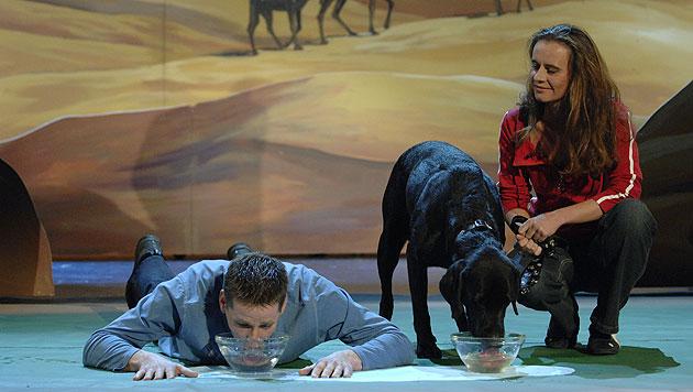 Tim Vetter wettete, er könne einen Napf schneller ausschlabbern als sein Hund. (Bild: ZDF)