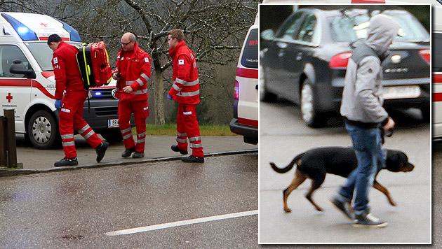 Dieser Rottweiler attackierte Kinder und Helfer, ehe er vom Besitzer weggebracht wurde. (Bild: Daniel Scharinger)