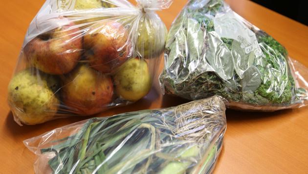 Gemüseproben aus den eigenen Gärten (Bild: Uta Rojsek-Wiedergut)