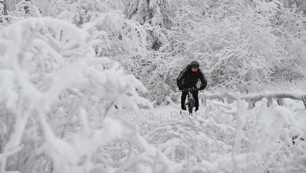 Jeder dritte Radfahrer auch im Winter unterwegs (Bild: dpa/Arne Dedert)