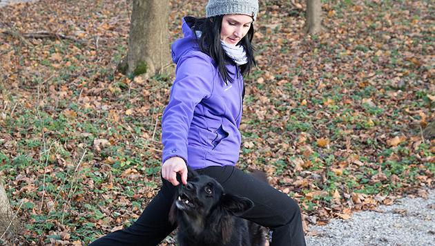 Fitnesstraining für Hund und Herrl in Salzburg (Bild: Neumayr/MMV)