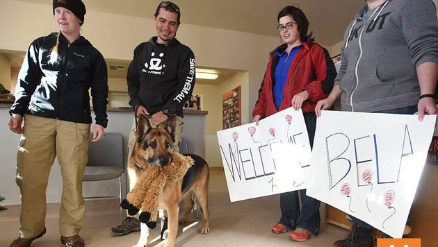 """Hund """"Bela"""" darf trotz Testament weiterleben (Bild: Best Friends Animal Society)"""