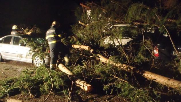 In Oberösterreich stürzten Bäume auf mehrere Autos. (Bild: APA/FF BAD ISCHL/FW RETTENBACH)