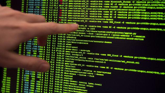 Österreich ist Europameister der Hacker (Bild: APA/EPA/DANIEL NAUPOLD)