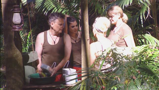 Rolfe, Tanja, Patricia und Maren lästern über Walter. (Bild: RTL/Stefan Menne)