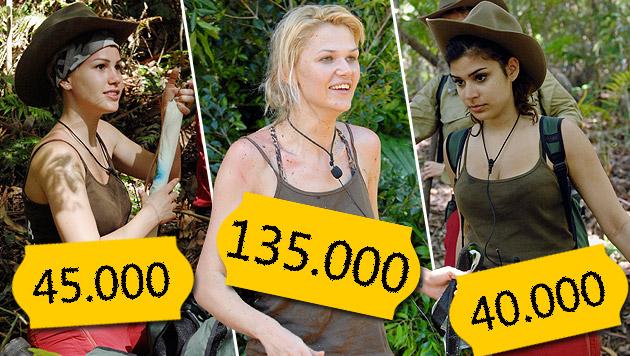 So viel verdienen die Dschungelstars (Bild: RTL/Stefan Menne)