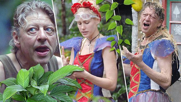 Angelina und Patricia raus ++ Maren droht Walter (Bild: RTL/Stefan Menne)