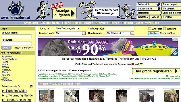 tieranzeigen.at kämpft gegen illegalen Tierhandel (Bild: Screenshot tieranzeigen.at)