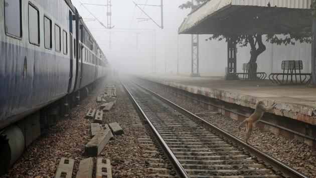 Selfie auf Gleisen: Drei Inder von Zug überfahren (Bild: AP)