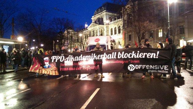Alle Bilder der Protestaktionen in Wien (Bild: krone.tv)