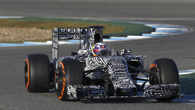Danny Ricciardo bringt ganzen Kontinent in Ekstase (Bild: AP)