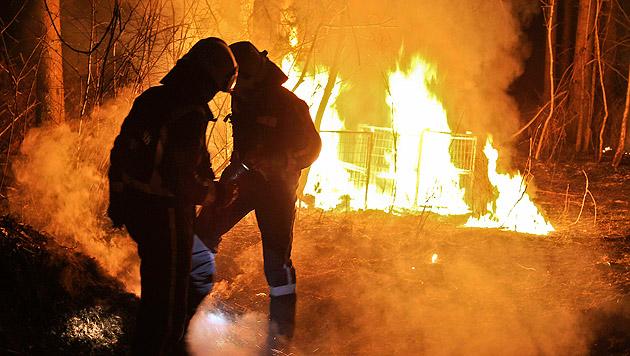 Bild vom Brand in der Alpenstraße im März 2014 (Bild: Markus Tschepp)