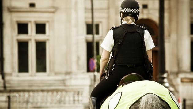 """Polizeipferd """"Brian"""" darf seinen Namen behalten (Bild: thinkstockphotos.de (Symbolbild))"""