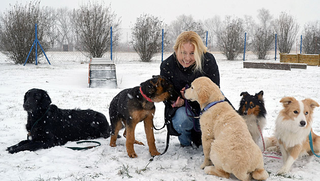 """""""Botschafterin des Hundes"""": Iva Schell (Bild: ÖKV)"""