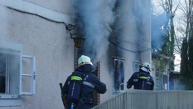 Beim Brand kamen fünf Tiere ums Leben, das Haus wurde zerstört. (Bild: FF Leonstein)