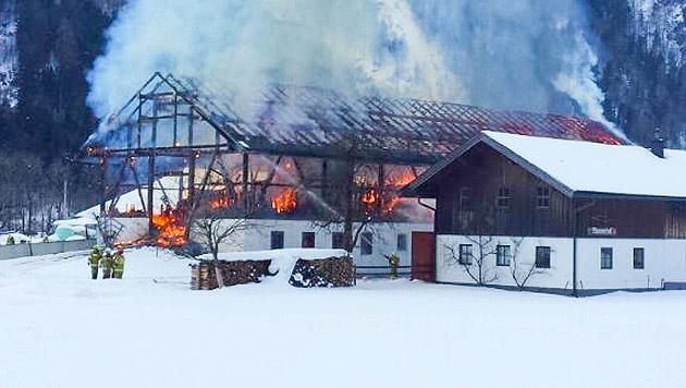 40 Kälber bei Stallbrand vor Flammentod gerettet (Bild: Neumayr/MMV)