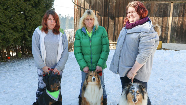 Carina, Monika und Selina Rachbauer (v. li.) mit drei ihrer Hunde. Wer zuerst bellte, ist unklar... (Bild: Daniel Scharinger)