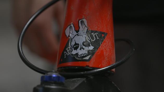 Ein Totenkopf mit Hasenohren ziert Gemma Corbera Collados Bike. (Bild: krone.tv)