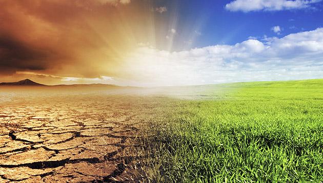 Der Klimawandel zählt laut den Forschern zu den aktuellsten und größten bestehenden Risiken. (Bild: thinkstockphotos.de)