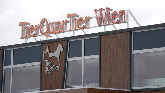 Tierquartier Wien derzeit zu 60 Prozent belegt (Bild: APA/Hans Klaus Techt)