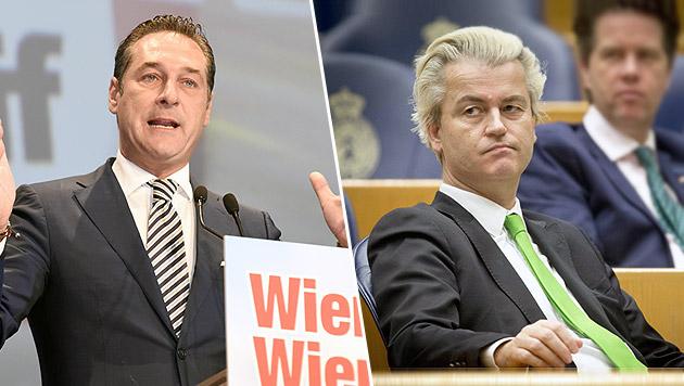 Strache lädt Wilders zu Auftritt in Hofburg ein (Bild: HERBERT P. OCZERET, EVERT-JAN DANIELS)