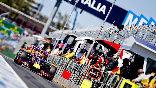 """Bullen"" droht Strafe beim Formel-1-Heimspiel (Bild: APA/EPA/SRDJAN SUKI)"