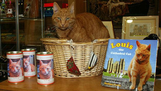 """""""Louis"""" ist sogar Star seiner eigenen Merchandising-Serie. (Bild: Wells Journal)"""