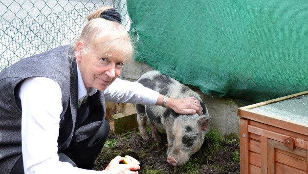 Die Tiroler Tierschutz-Ikone Inge Welzig soll von den Vorgängen im Verein ebenfalls enttäuscht sein. (Bild: Andreas Fischer)