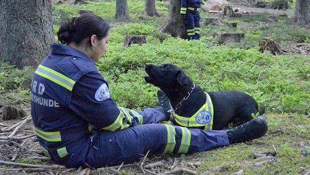 ÖRD will bald Rettungshunde in Kärnten ausbilden (Bild: ÖRD)