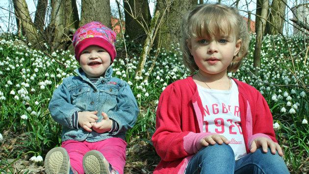 Diese Kinder freuen sich über die Frühlingsblumen in Pettenbach â013 doch der Winter kehrt zurück. (Bild: Martina Zehetner)