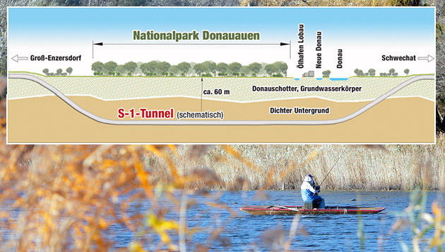 Der Lobautunnel soll unter dem Nationalpark verlaufen. Das Projekt soll 2025 fertig sein. (Bild: APA/Georg Hochmuth)