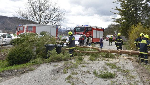 Die Feuerwehr rückte zu mehr als 200 Sturmeinsätzen aus. (Bild: Jack Haijes)
