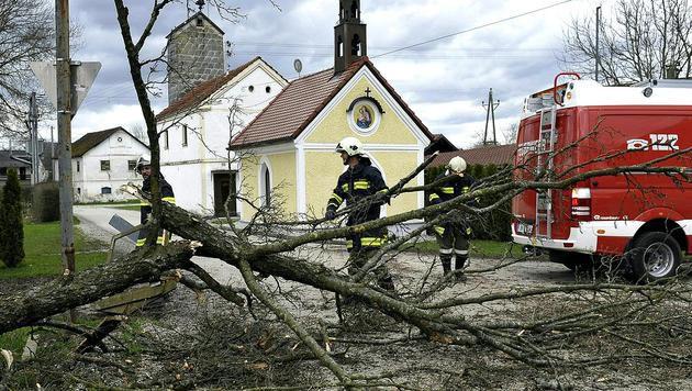 In Oberösterreich kam es vielerorts zu Sturmschäden, wie etwa hier in Braunau. (Bild: APA/MANFRED FESL)