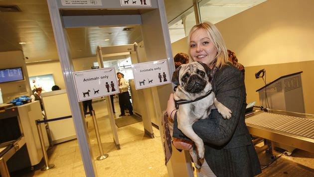 Lisa Hödlmoser aus Salzburg und ihr Mops haben den neuen Haustier-Scanner am Flughafen getestet. (Bild: Markus Tschepp)