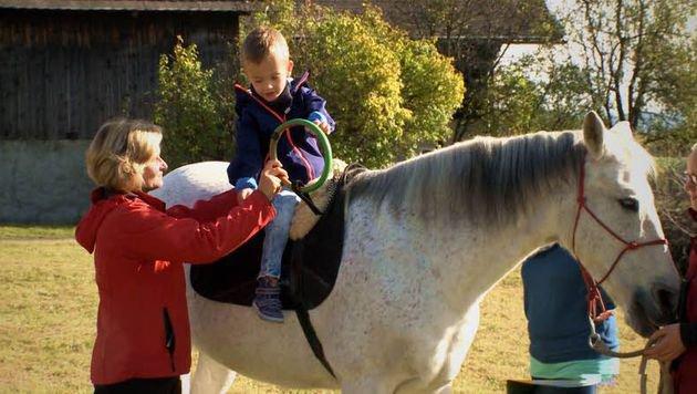 "Pferde-Therapiezentrum soll ausgebaut werden (Bild: Verein ""Hippokrates"")"