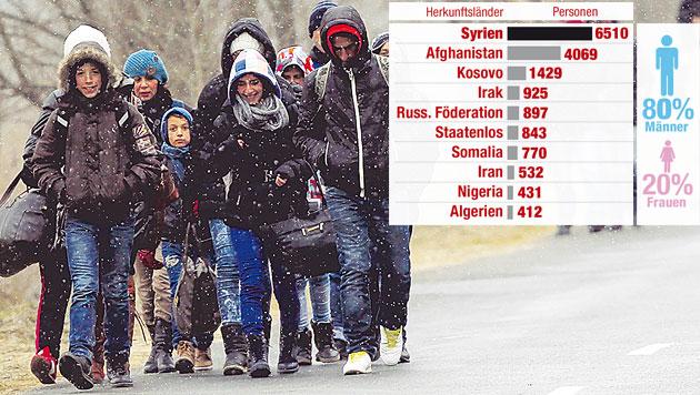 Zahl der Flüchtlinge aus Syrien verzehnfacht (Bild: Krone-Grafik)