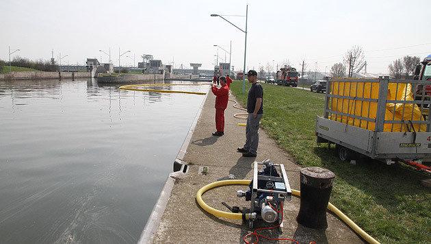 Umweltalarm nach Öl-Unglück auf der Donau (Bild: Andi Schiel)