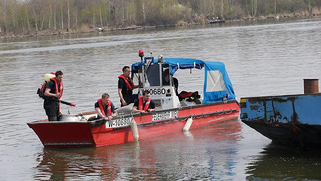 Umweltalarm nach Öl-Unglück auf der Donau (Bild: Klemens Groh)