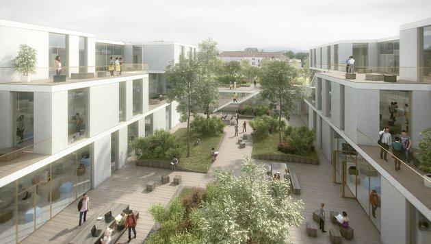 In Hietzing entsteht in den nächsten Jahren die topmoderne AHS Wien West mit Sportschwerpunkt. (Bild: ARGE AHS Wien West)