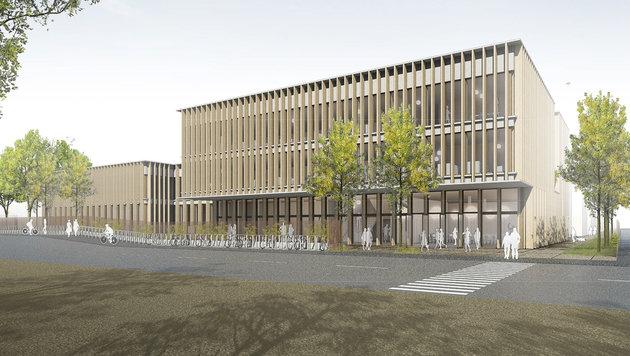 Die Universität für Bodenkultur (19. Wiener Gemeindebezirk) bekommt ein neues Türkenwirt-Gebäude. (Bild: Baumschlager Hutter ZT GmbH)