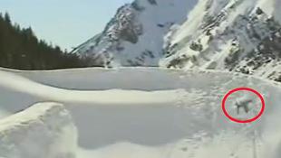Aua! Skifahrer hebt ab und landet im Tiefschnee (Bild: facebook.com/Skifahrer)