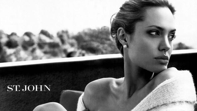 Angelina Jolie hat sechs Kinder - drei leibliche und drei adoptierte. (Bild: Viennareport)