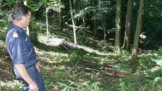 Hier im Wald lag die Leiche von Autohändler Tomislav. J. - sein Mord ist damit weiter ungeklärt. (Bild: Markus Tschepp)