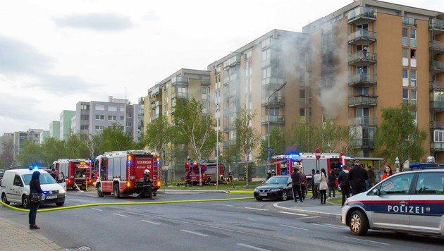 Ein Toter, mehrere Verletzte bei 4 Bränden in Wien (Bild: Leserreporter Markus Leitner)
