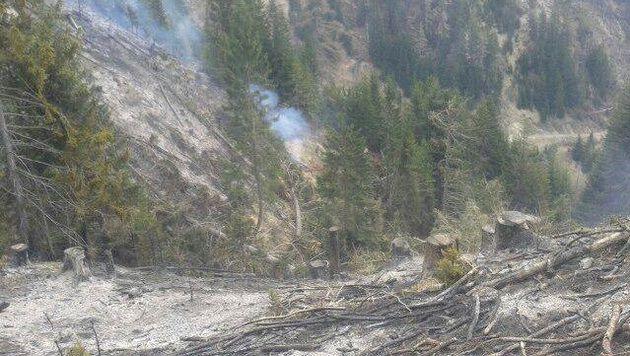 Waldbrand in Kärnten: Kampf gegen Glutnester (Bild: Feuerwehr Ferlach)