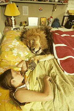 Der Löwe als Kuscheltier - für Melanie Griffith ganz normal. (Bild: Eric Brissaud/Eyevine/picturedesk.com)