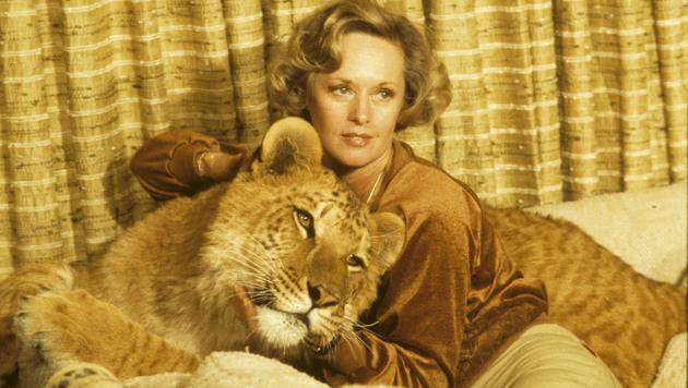 """Tippi Hedren kuschelt in """"Roar"""" mit einem Löwen. (Bild: Eric Brissaud/Eyevine/picturedesk.com)"""
